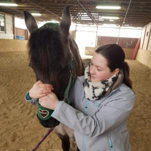 Gelenktest beim Pferd